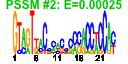 output/cmonkey_4.1.5_hal/htmls/cluster037_pssm2.png